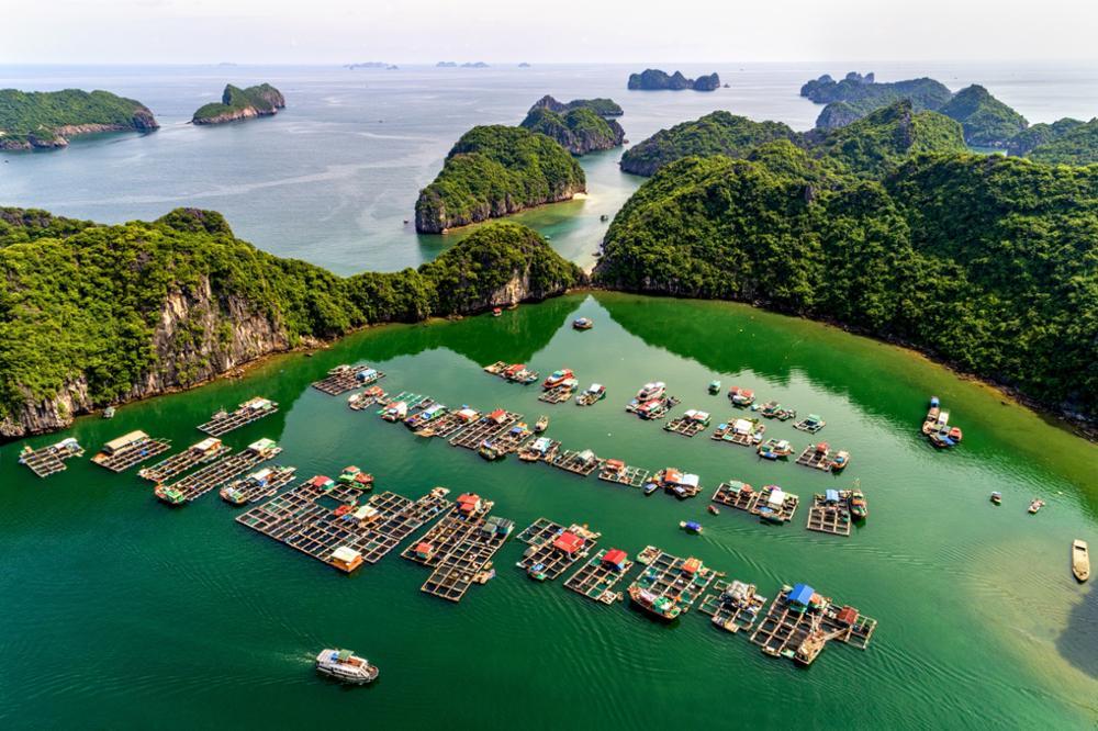 La Baie d'Halong, comment l'explorer loin des foules ?